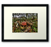I Can't Hide ! Wild Mushrooms ~ Framed Print
