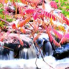 Autumn Falls in Pink by Pbratt79