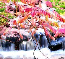 Autumn Falls in Pink by Brenda Dahl