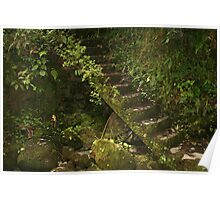 Overgrown Stone Staircase Poster