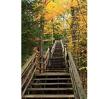 Steps through autumn at Au Sable National Scenic River Photographic Print