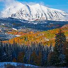 Kebler Pass Fall Snow by Luann wilslef