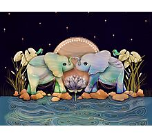 Lotus Flower Elephants of the Rainbow Photographic Print