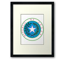 Texas Barbie | State Seal | SteezeFactory.com Framed Print