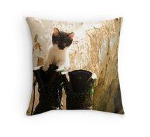 Baby cat exploring Throw Pillow