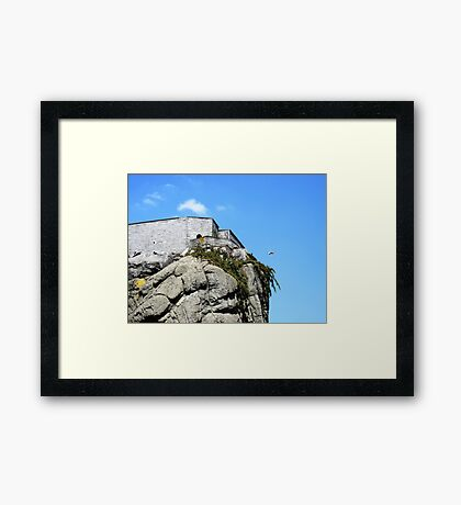 Jumper! Framed Print