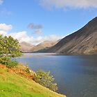 Wast Water. by John Pickles