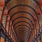 Ireland. Dublin. Trinity College. Library. by vadim19