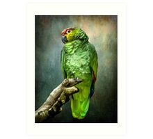 Forty Shades of Green Art Print