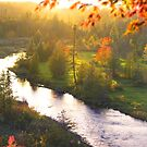Riverbank Tranquillity by Igor Zenin