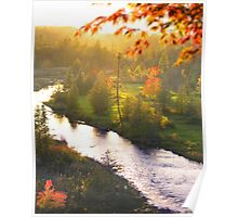 Riverbank Tranquillity Poster