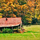 Red Barn and Deer on Blue Ridge Parkway by Julie Everhart