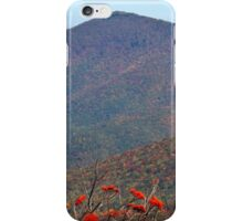 View from Craggy Dome Mountain iPhone Case/Skin