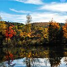 Glowing Waters of Vermont by Julie Everhart