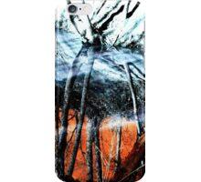 Wasteland  iPhone Case/Skin