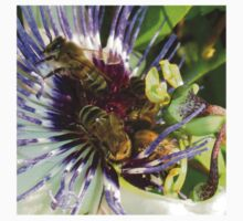 Passion Flower and Honey Bees Collecting Pollen Kids Tee