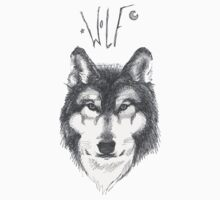 Wolf Sketch by zazme