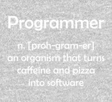 Programmer definition Kids Tee