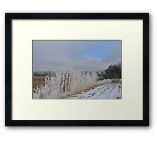 First Frost # 3 Framed Print