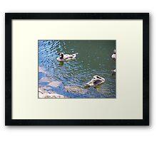 Geese # 5 Framed Print