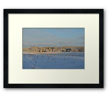 Minnesota in February # 1 Framed Print