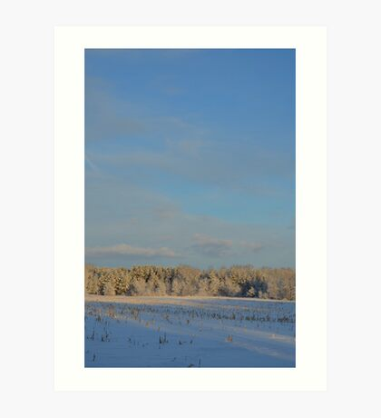Minnesota in February # 2 Art Print