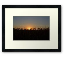 Evening Sunset # 4 Framed Print