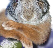 Earth Day Bunny Rabbit Sticker