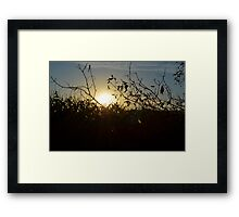 Sun Beams # 1 Framed Print