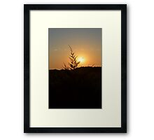 Evening Sunset # 7 Framed Print