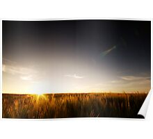 Sunrise over Northumbria Field Poster