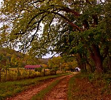 Road to Walnut Grove by Lisa G. Putman