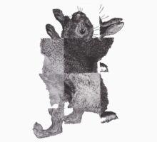 Rhythmic Bunny by alpha1178
