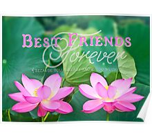 Best Friends Forever Gorgeous Pink Lotus Flower Pair Poster