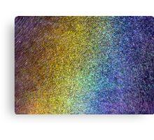 Inside a Rainbow Canvas Print