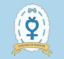 Soldier of Wisdom - Sailor Mercury by ProjectXD001
