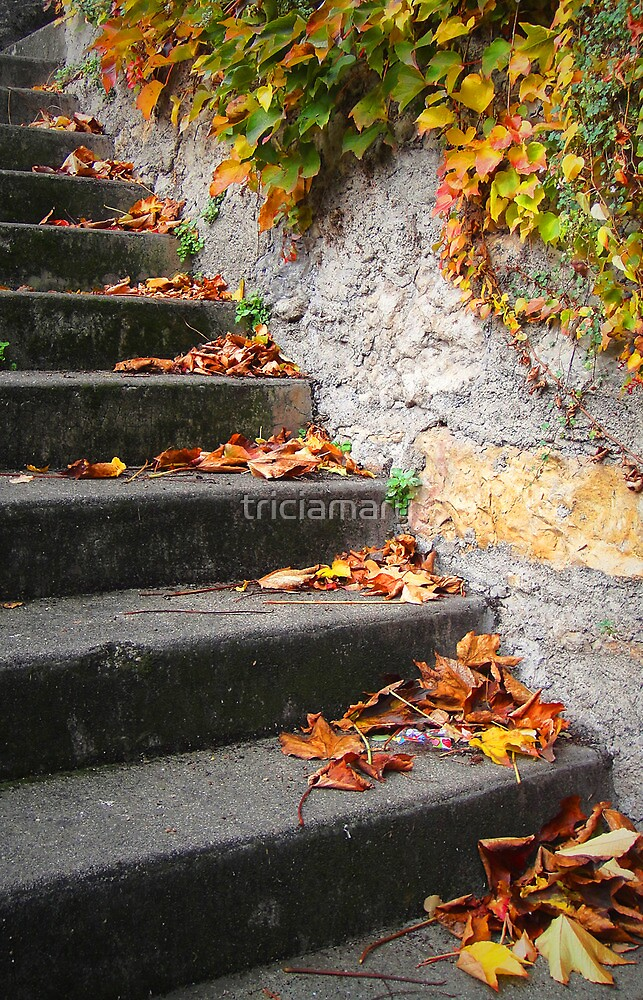 Falling Steps by triciamary