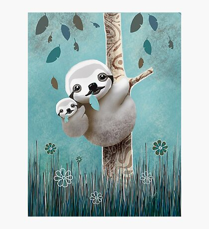 Baby Sloth Daylight Photographic Print