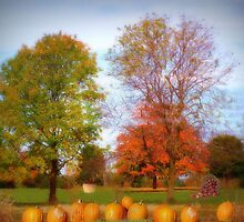 Autumns Bounty by Linda Miller Gesualdo