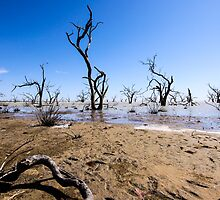 Menindee Lake NSW Australia  by hoboroad