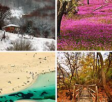 Four seasons in Greece by Hercules Milas