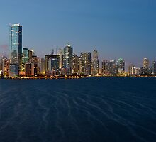 Miami Skyline by DDMITR