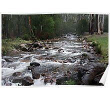 Delatite River rapids, Mt Buller, Vic Poster