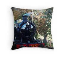 """"""" Memories of bygone days"""" Throw Pillow"""