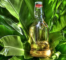 Olive Green by Tsitra