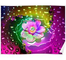Lotus in the Rain Poster