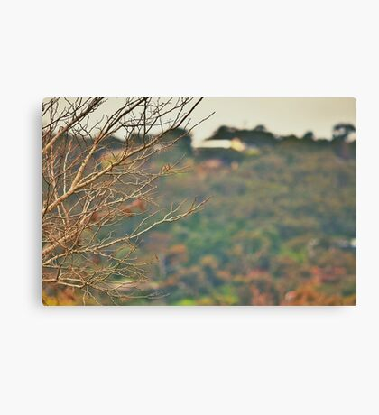 Trees of East Parkway Canvas Print