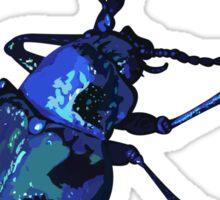 Water Beetle Sticker