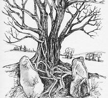 Castleruddery Stone Circle by CapallGlas
