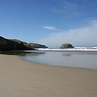 Allans Beach - New Zealand by Nicola Barnard